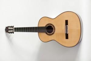 thomas friedrich guitarren_36