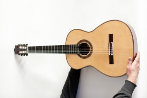 thomas friedrich guitarren_38